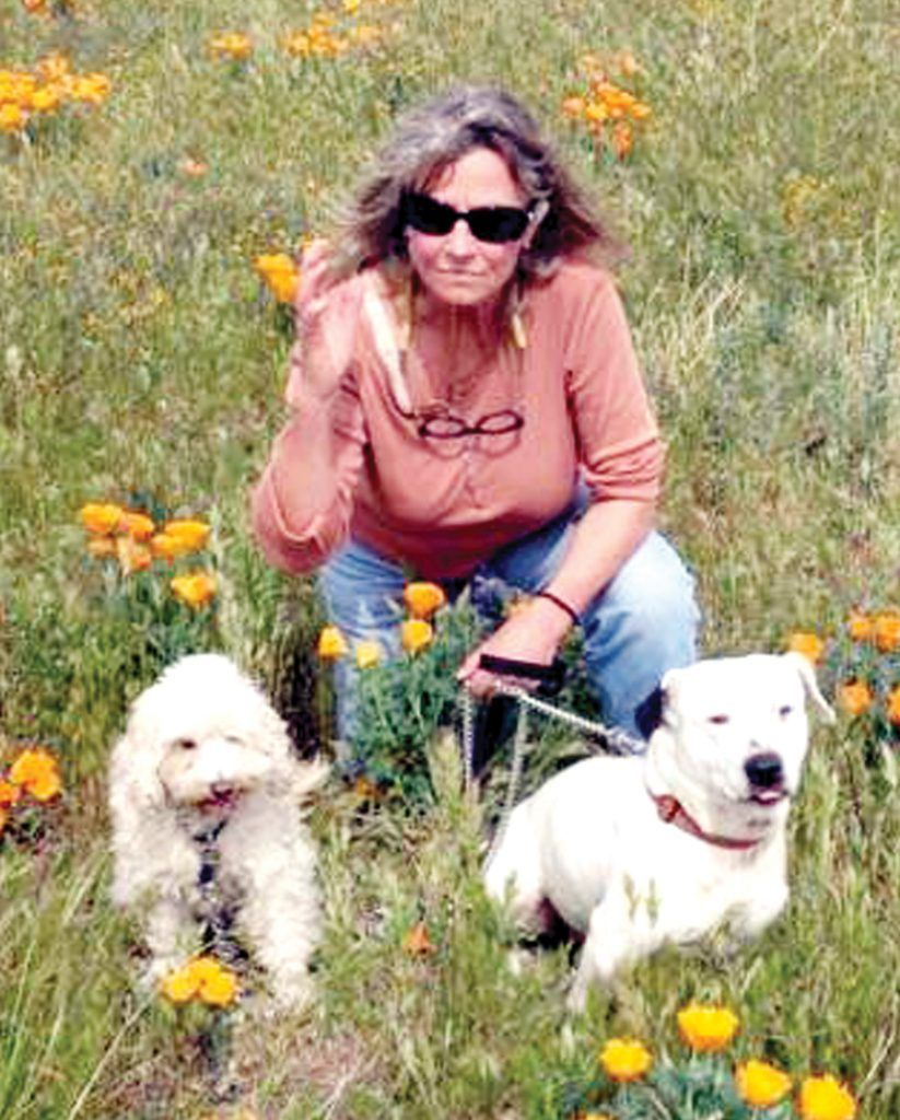 Marcia Wolfe with her dogs