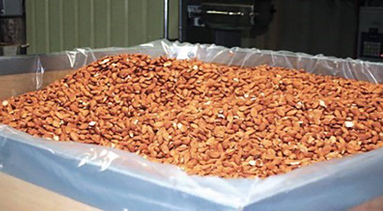 New Marketing Approaches Help Almond Exports Grow