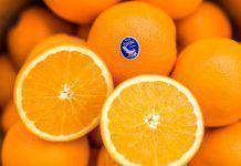Johnston Farms' navel oranges.