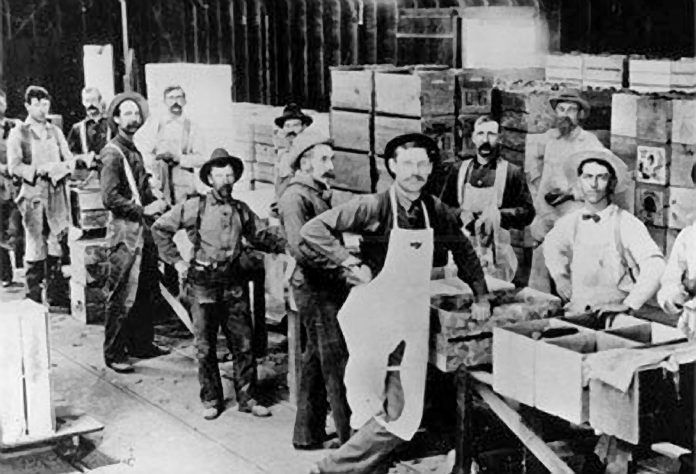 Sunkist packing house, about 1900