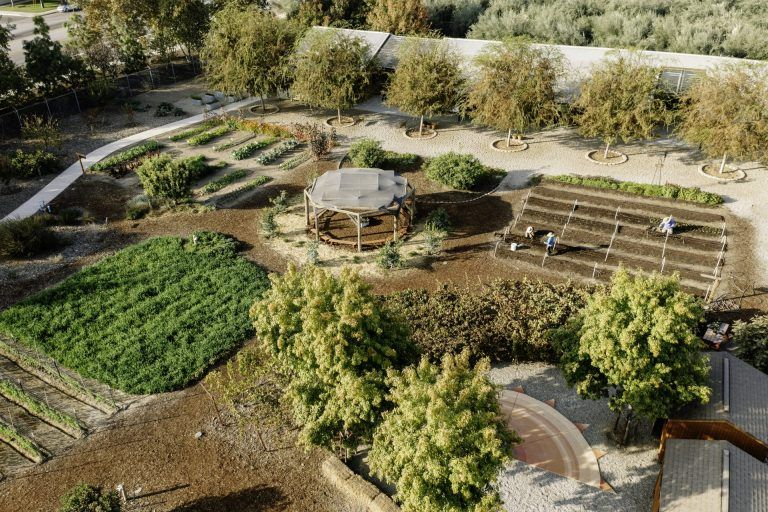Edible Schoolyard Kern County Enchants, Educates Students Through Farm-to-Fork Learning