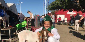 girl with lamb at Kern County Fair