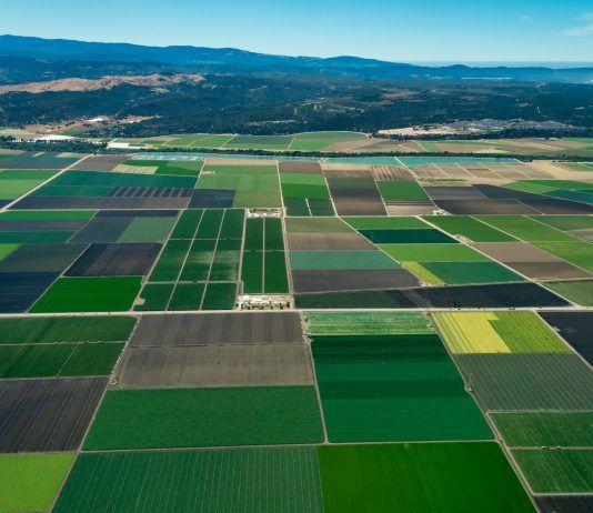 arial view of California farmland