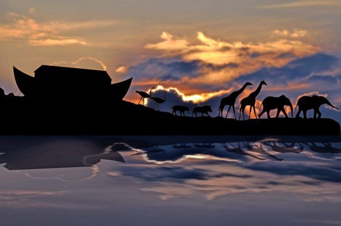animals disembarking ark