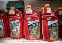 Sevin Carbaryl container