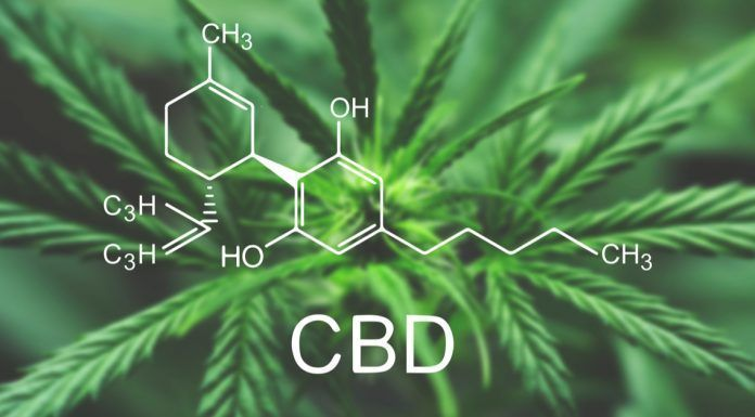 CBD Macro a cannabis flower and marijuana macro