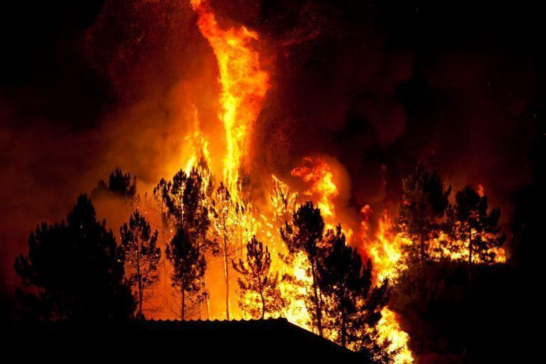 Farm Bureau Coalition Urges Support for Federal Wildfire Bill