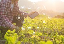 Agriculture technology farmer man using tablet computer analysis data and visual icon.