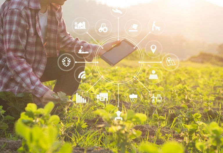 USDA Seeks Input on Ready-to-Go Technologies and Practices for Agriculture Innovation Agenda