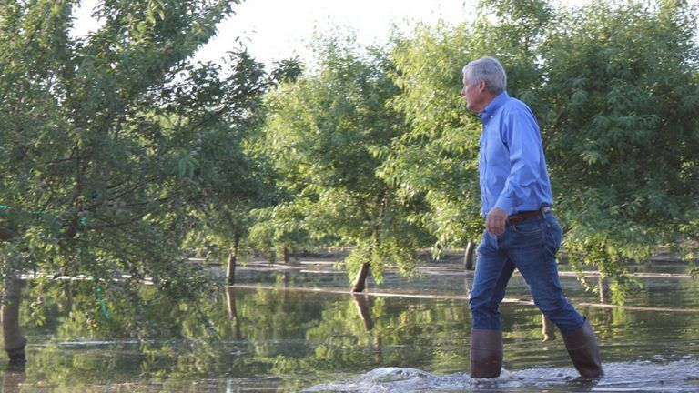 TAC 2020 Session Covers How to Maximize Groundwater Recharge