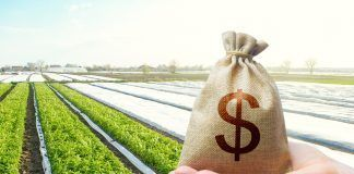bag of money and farm land