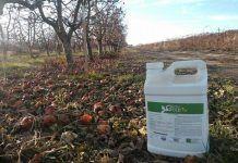 Agro Gold WS fertilizer
