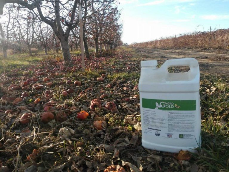 CDFA Issues Stop Use Notice and Statewide Quarantine on Organic Fertilizer AGRO GOLD WS