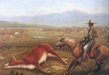 Painting of a Vaquero roping cattle during 1830s Spanish California.