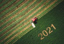 2021 mowed into farmland