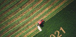2021 mowed into farmland