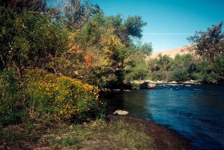 Help Restore the Kern River