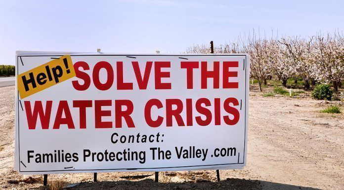 "Sign, ""Help! Solve The Water Crisis,"" posted by a flowering almond orchard, addresses the lack of water for agricultural use–Bakersfield, CA"