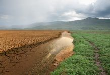dry field climate change
