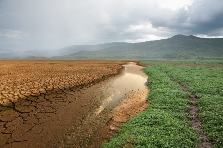 Food and Agriculture Climate Alliance Members Testify on Opportunities to Tackle Climate Change