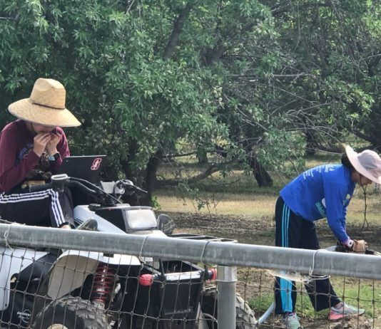 McFarland, California students working in an orchard