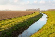water in agricultural ditch