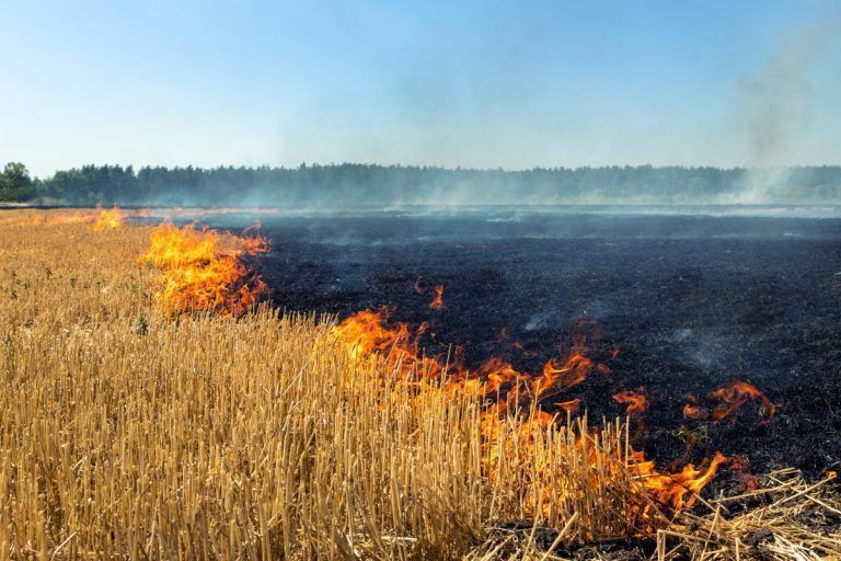 Wildfire Insurance Legislation Heads to the Governor