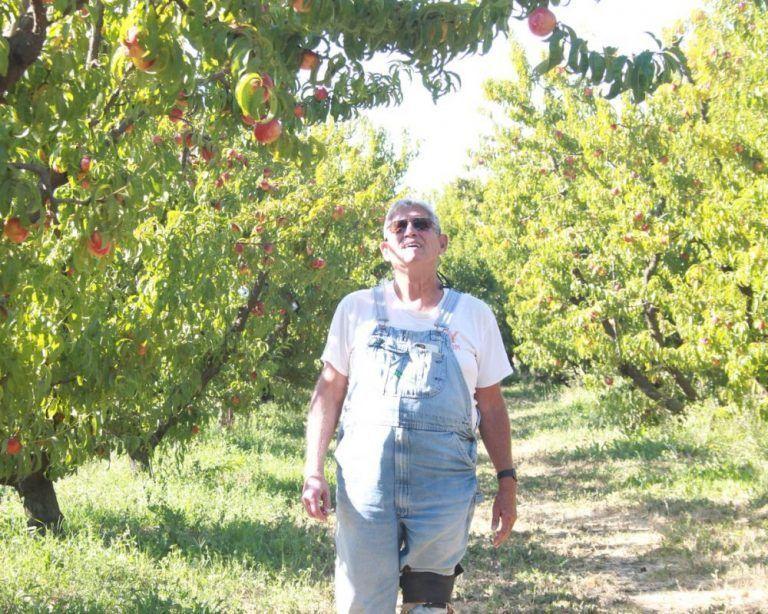 Delta Water Cutbacks Weigh on Farmers