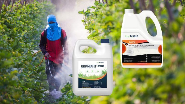 State Warns Organic Farmers to Stop Using W.O.W. Whack Out Weeds! and EcoMight-Pro Pesticides