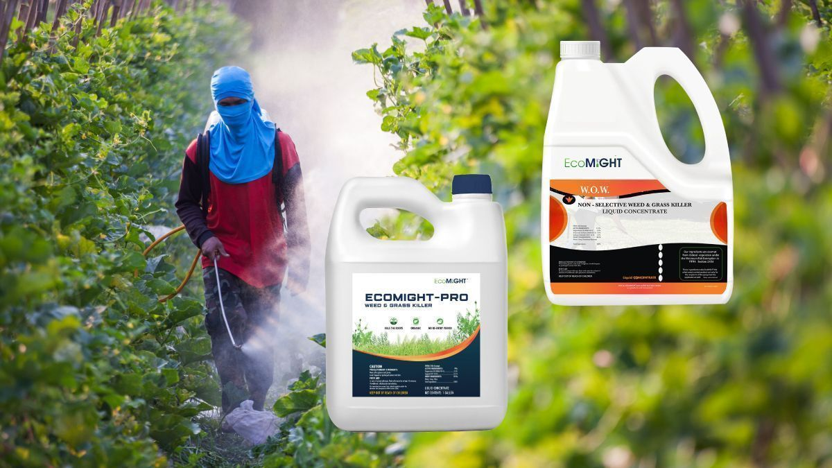 WOW and Ecomight Pesticide