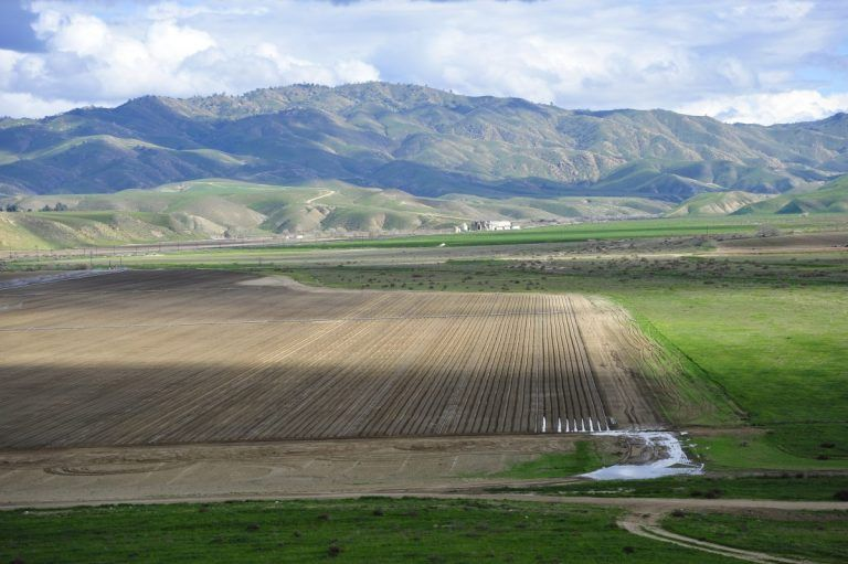 California Department of Food and Agriculture Announces Multiple Funding Opportunities for California Specialty Crops