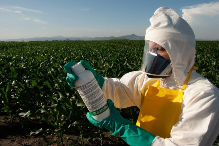 Department of Pesticide Regulation Opens $5.55 Million Grant Application Process to Fund Innovative Solutions for Sustainable Pest Management Tools and Practices